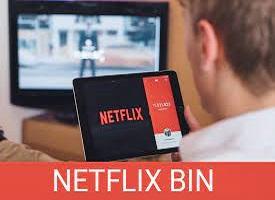Netflix Bins 2021   How to Use BINs To Create Netflix Accounts